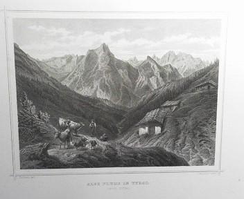 Alpe Plums in Tyrol. (= aus: Das Kaiserthum Oesterreich - Ungarn nebst Siebenbürgen, Tyrol, Triest sowie  II.Abtheilung).