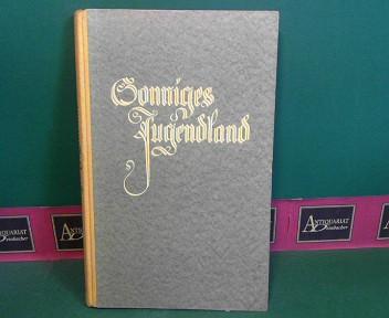 Sonniges Jugendland - Lesebuch für österreichische Hauptschulen - 2.Teil. 2. Aufl.