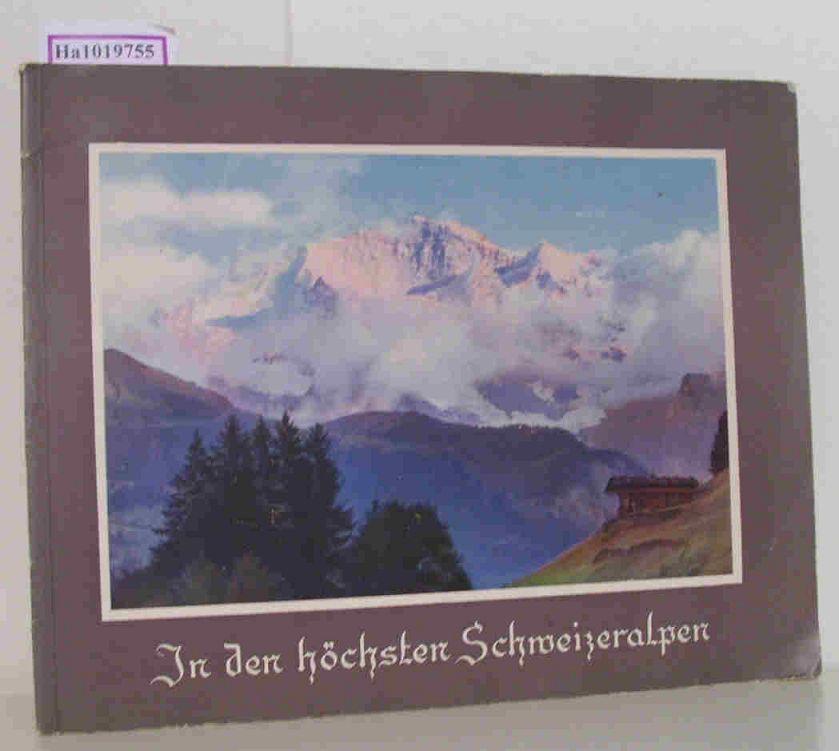 In den höchsten Schweizeralpen.
