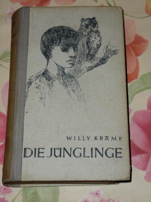 Die Jünglinge : Roman.