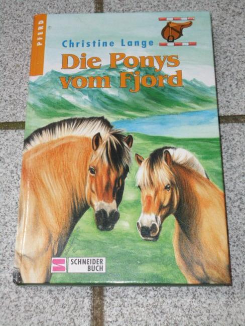 Die Ponys vom Fjord.