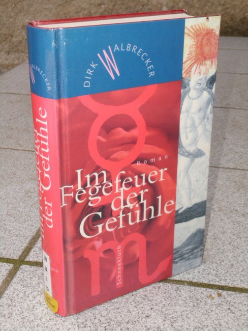 Walbrecker, Dirk: Im Fegefeuer der Gefühle : Roman.
