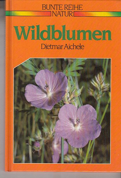 Wildblumen - erkennen und benennen