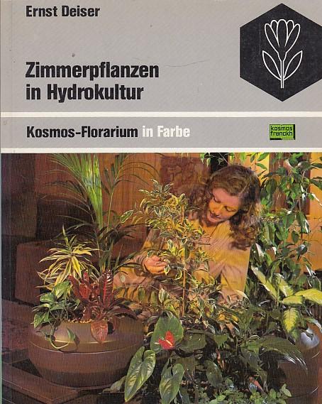 Zimmerpflanzen in Hydrokultur.
