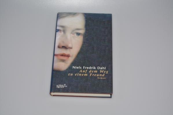 Auf dem Weg zu einem Freund : Roman. Aus dem Norweg. übers. von Ina Kronenberger 1. Aufl.