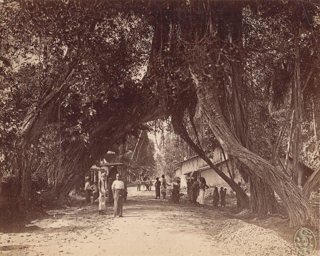 Ceylon : Colombo.