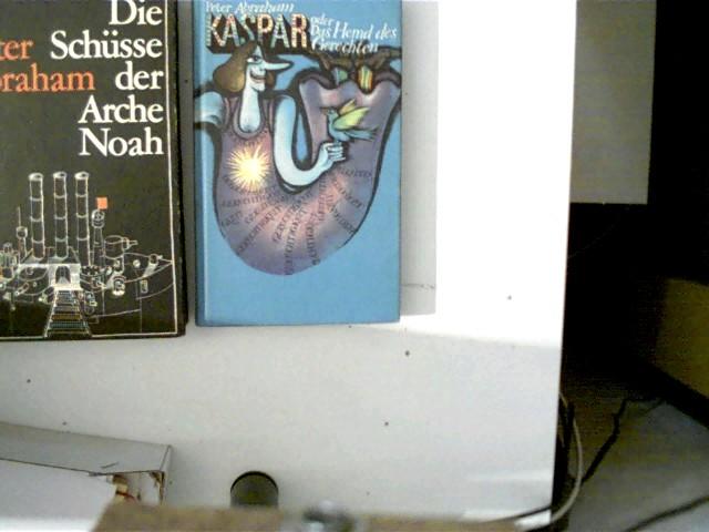 1. Die Schüsse der Arche Noah, 2. Kaspar oder Das Hemd des Gerechten, , Konvolut Bücherpaket, 2x Hardcover,