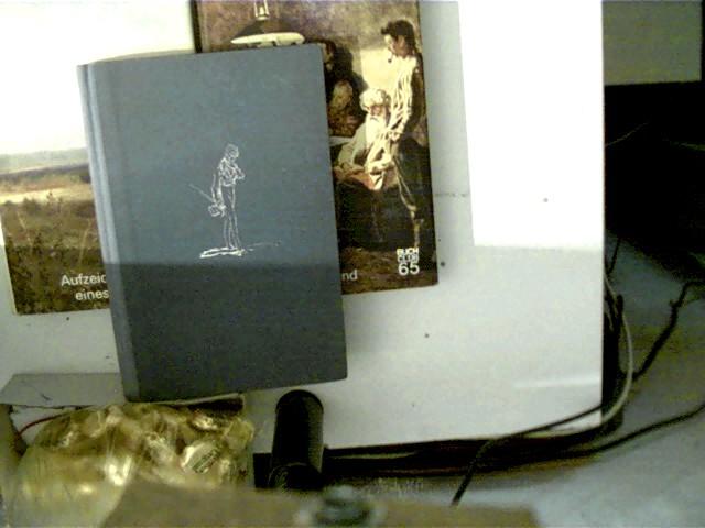 1. Rudin, 2. Vorabend, 3. Aufzeichnungen eines Jägers, , Konvolut Bücherpaket, 1x grüne Halbleinwand,