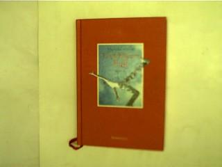 Unsichtbarer Fall, 1. Aufl.,