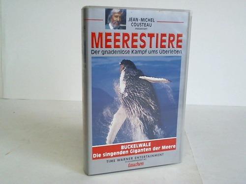 Buckelwale. Die singenden Giganten der Meere