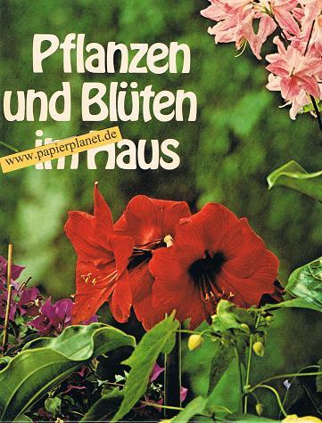 Pflanzen und Blüten im Haus