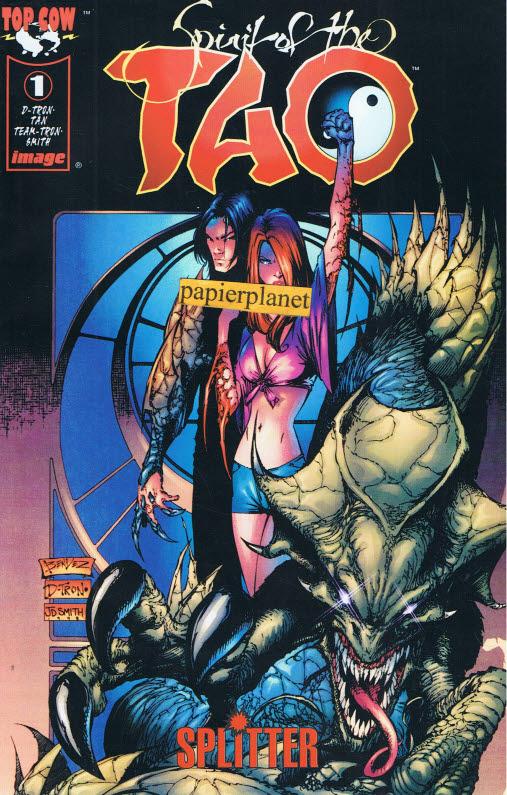 Spirit of the Tao 1 Variant-Cover,  Splitter Top Cow Image Comics, Comic-Heft