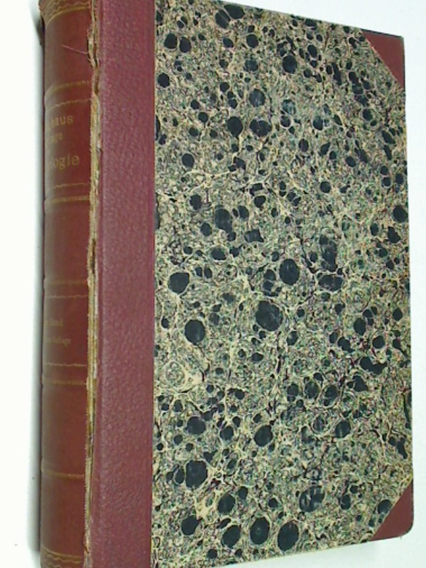 Grundzüge der Psychologie Bd. 2  (1.-3. Aufl. 1913)