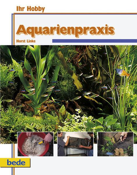 Aquarienpraxis