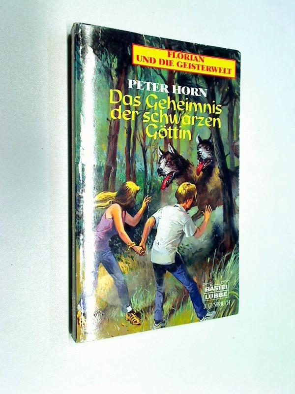 Das Geheimnis der schwarzen Göttin. Florian und die Geisterwelt, Bd.: 76108.