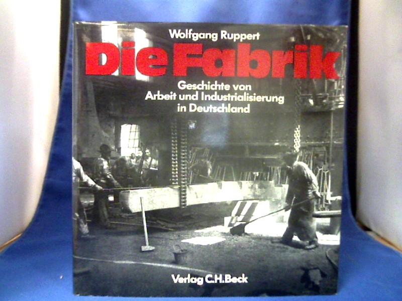 Die Fabrik : Geschichte von Arbeit u. Industrialisierung in Deutschland. 1. Auflage.