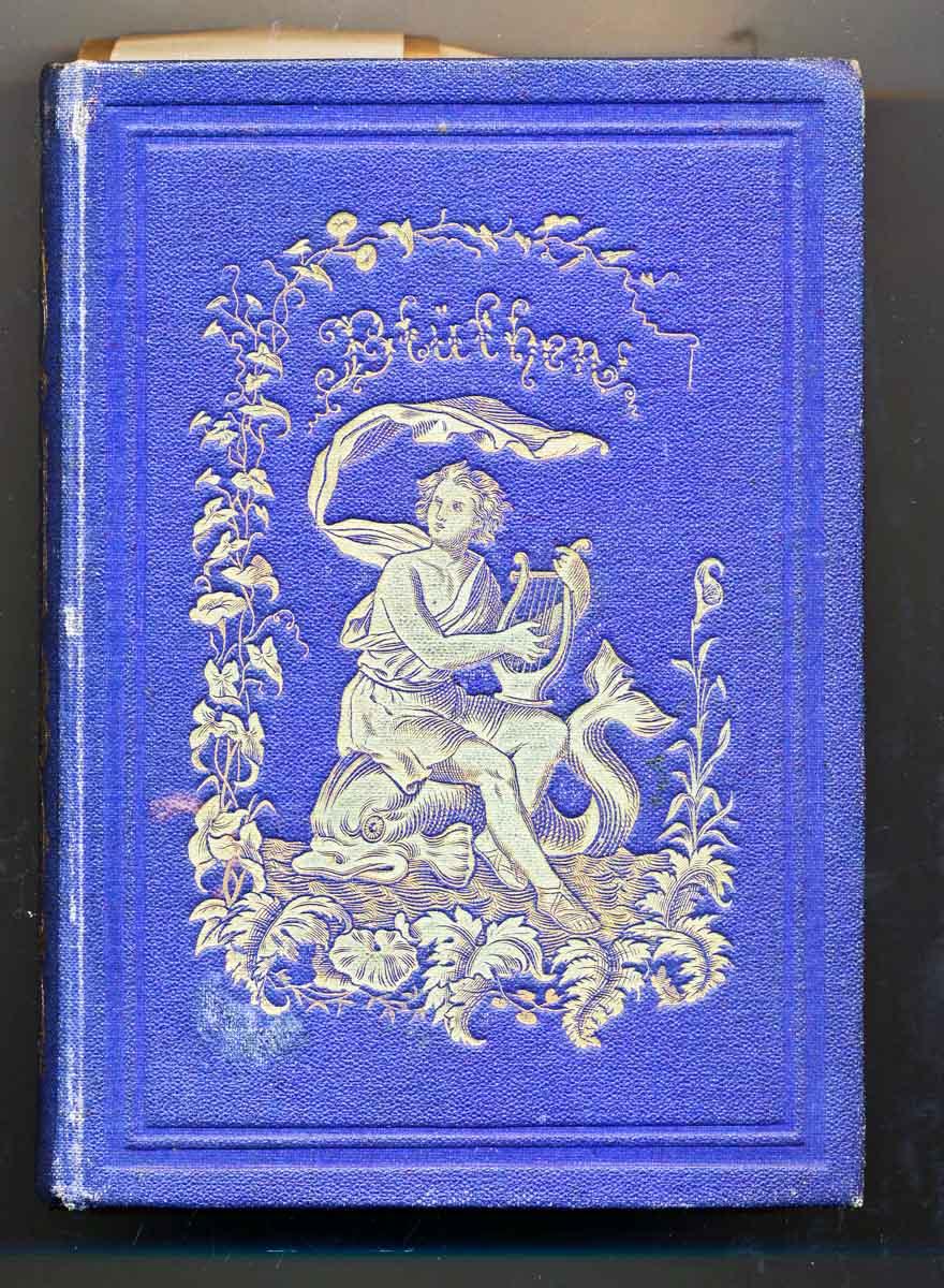 Blüthen spanischer Poesie. Metrisch übertragen von Friedrich Wilhelm Hoffmann. 3., stark vermehrte Aufl.