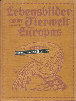 Lebensbilder aus der Tierwelt Europas. Vögel Europas. Bd. 1-4. (je 2 Bde. in 1 Bd.). 4. Aufl.