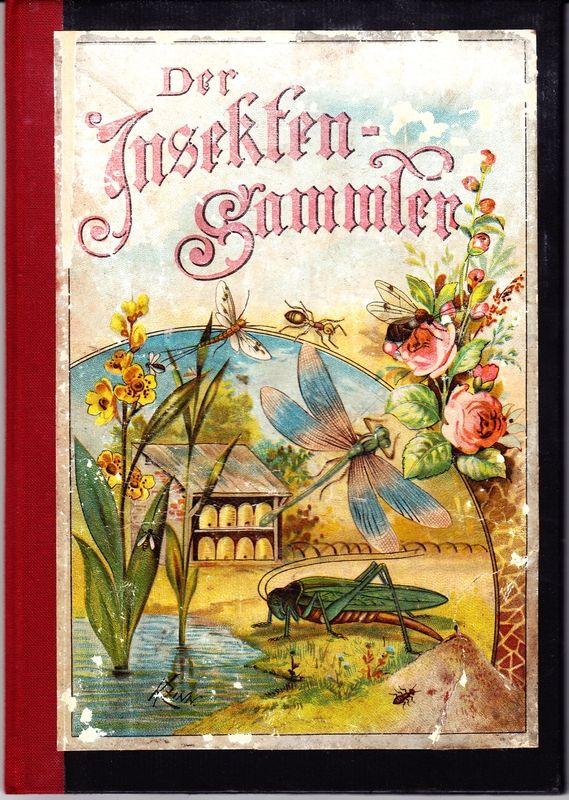 Der kleine INSEKTENSAMMLER. Anleitung zur Kenntnis und zum Sammeln der einheimischen Insekten mit Ausnahme der Käfer und Schmetterlinge.