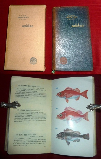 Tanaka`s Japanese Fishes in Life Colours.
