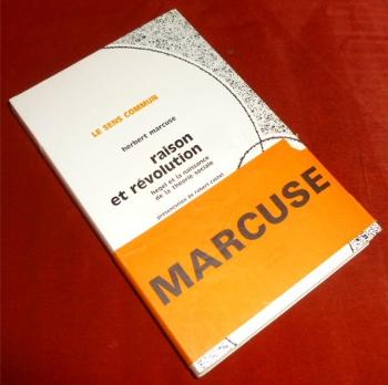 Raison et Revolution. Hegel et La Naissance De La Theorie Sociale.