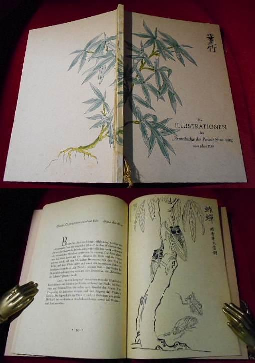 Die Illustrationen des Arzneibuches der Periode Shao-hsing (Shao-hsing pen-ts