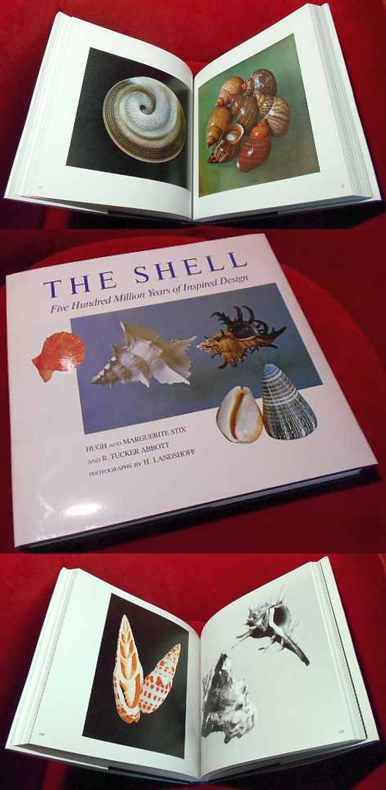 The Shell. Five Hundred Million Years of Inspired Design.. Photographs By H. Landshoff