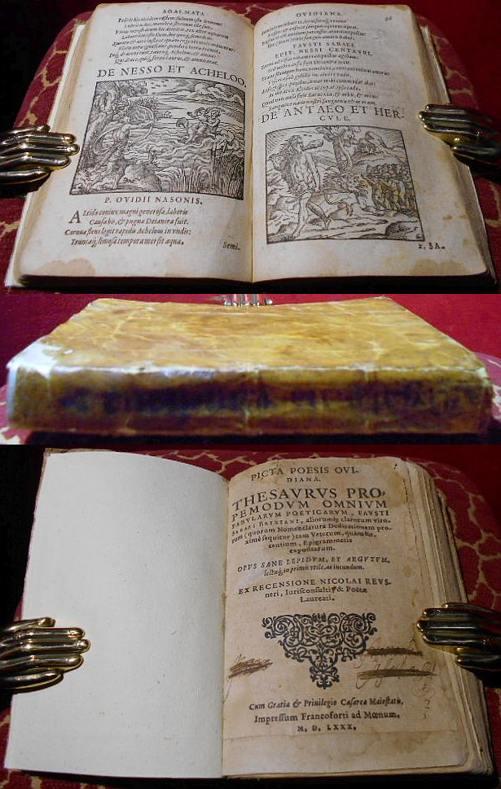 Picta poesis Ovidiana. Thesaurus propemodum omnium fabularum poeticarum Fausti Sabaei i Brixiani,