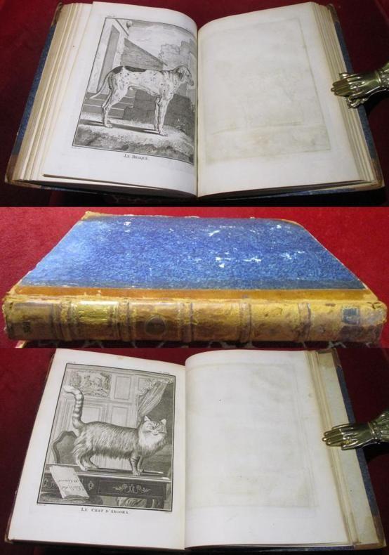 Mrs de Buffon & Daubenton Histoire naturelle générale et particulière avec la description du cabinet du roi. Nouvelle édition. Tome Cinquième