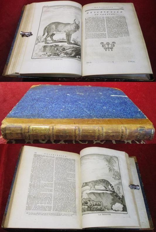 Histoire naturelle générale et particulière avec la description du cabinet du roi. Nouvelle édition. Tome neuvième.