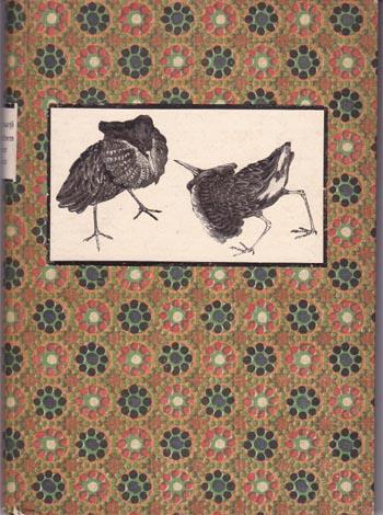 Aus dem Vogelleben unsrer Heimat - Ornithologische Plaudereien 1. Auflage